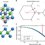 Nanoscopic diffusion of water on a topological insulator